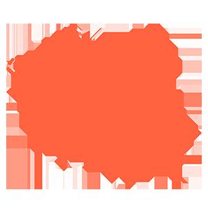 Poland data retention subscription