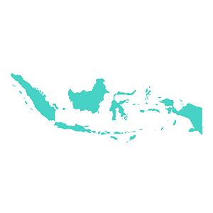 Indonesia data retention