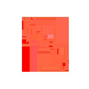 The Bahamas data retention subscription