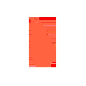Sri Lanka data retention subscription