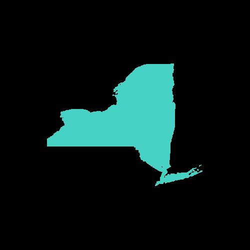New York data retention