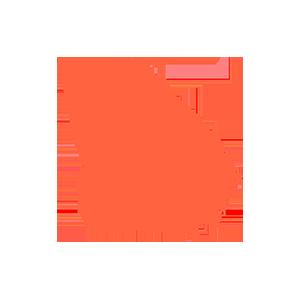 Georgia (US) data retention subscription