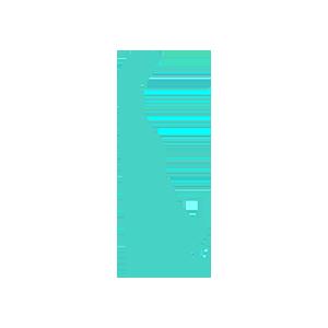 Delaware records retention