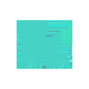 Louisiana data retention