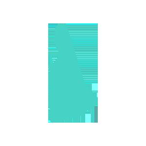 New Hampshire data retention